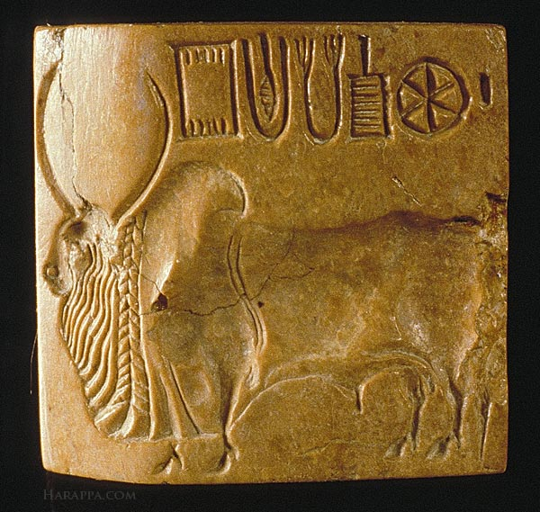 Harappa Seal of Bull in Indus Valley Civilization